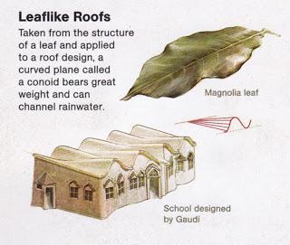 Gaudi school roof