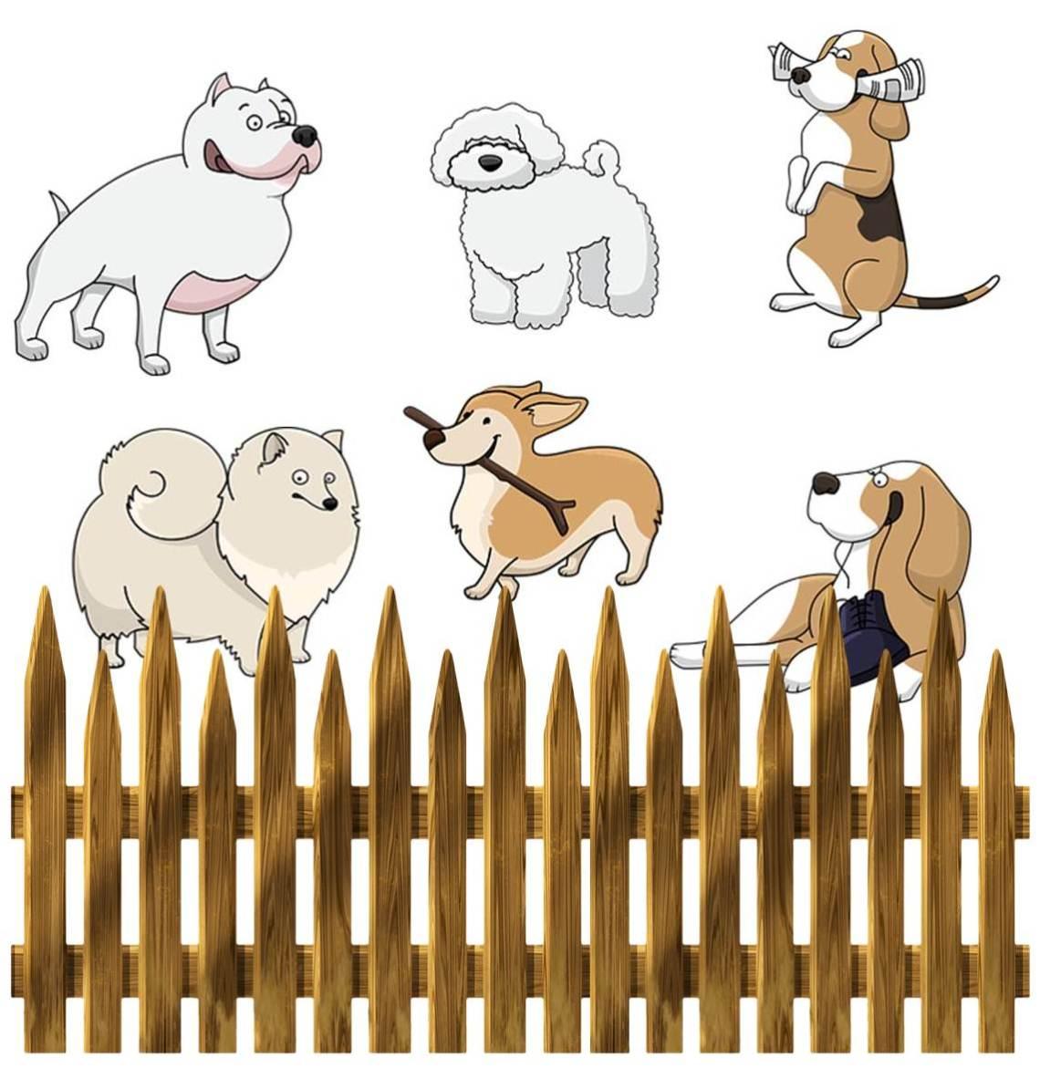hund10